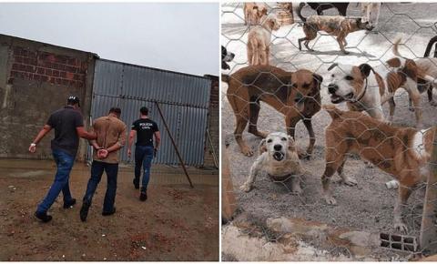 Suspeito é preso ao aplicar golpe de R$ 400 mil em ONG que acolhe animais