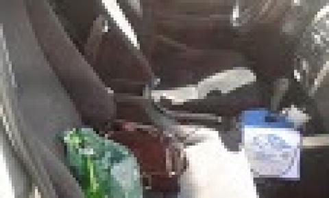 Mulher embriagada ao volante finge ter Covid-19 para escapar do bafômetro